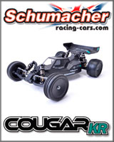 Schumacher RC Cars